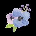 BlueFlowers2